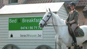horseowner holiday near the beach in belgium guesthouse beachhouse